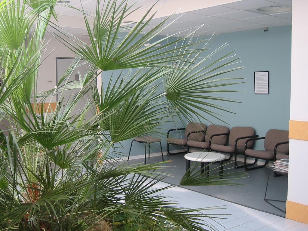Photo de la salle d'attente de la clinique Aramav
