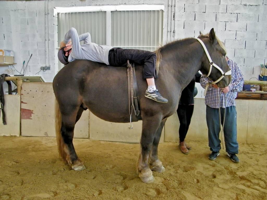 Patiente allongée en arrière sur le dos d'un cheval lors d'une séance de psychomotricité avec le cheval