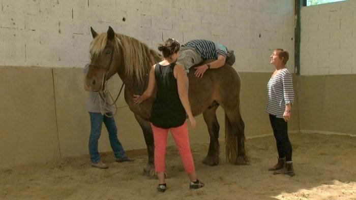 L'ARAMAV sur France 5 : La psychomotricité avec le cheval
